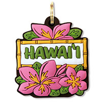Key Cover Pink Plumeria (Hawaii)