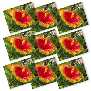 'Flowers of Hawaii' 2021 Trade Calendars - Deals by The Case