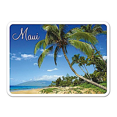 Die-Cut Tin Picture Magnet, Seaside Palm - Maui