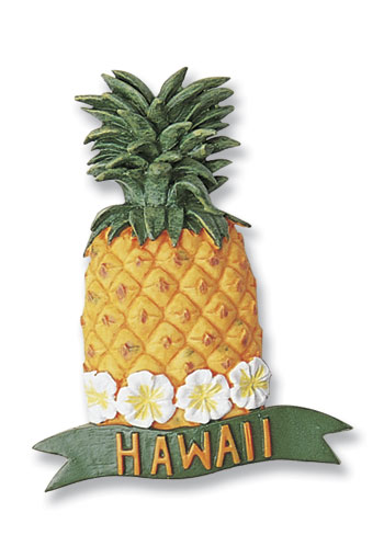 Hand-Painted Magnet Pineapple