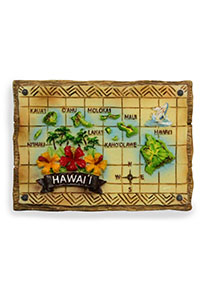 Hand Painted Magnet Hawaiian Island Maps