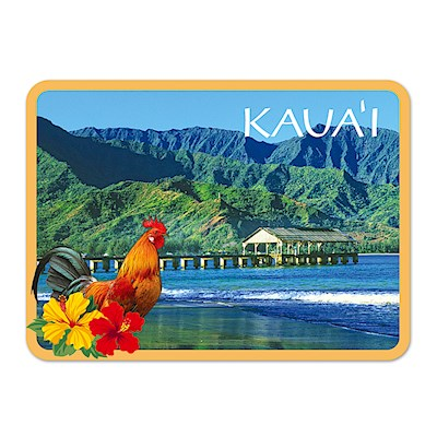 Die-Cut Tin Picture Magnet - Hanalei