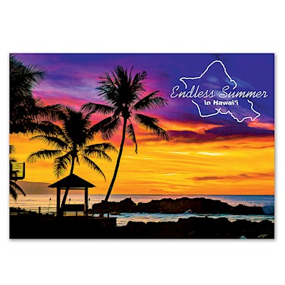 Endless Summer 4 X 6 O'ahu Postcard