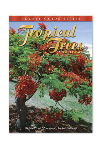 Tropical Trees of Hawai'i