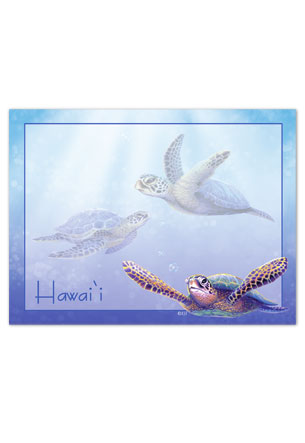 Aloha Stick n Notes Sea Turtles (Hawaii)