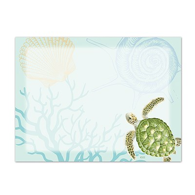 Aloha Stick 'N Notes Honu Voyage Aqua