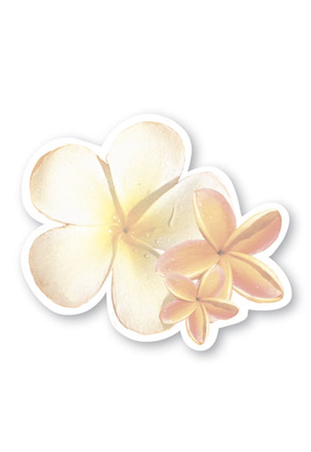 Shaped Aloha Stick n Notes Plumeria Blossoms