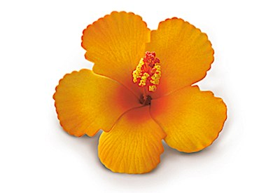 Foam Hibiscus Clip, Orange