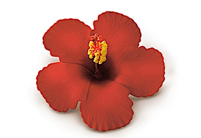 Foam Hibiscus Clip, Red