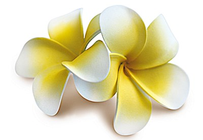 Foam Double Plumeria Clip, Yellow w/ White Edges