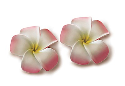 Foam Baby Plum. Clips, Pink & White w/ Yellow 2-pk