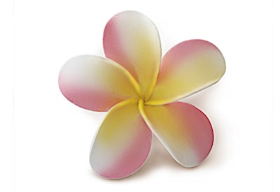 Foam Single Plumeria Clip, Pink & Yellow