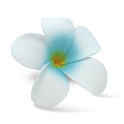 Foam Single Plumeria Clip, White & Blue