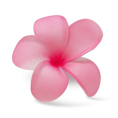 Foam Single Plumeria Clip, Pink & Dark Pink