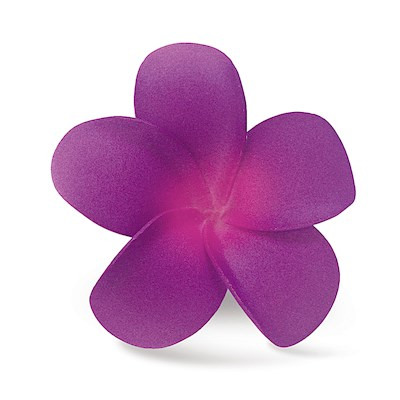 Foam Single Plumeria Clip, Purple & Pink