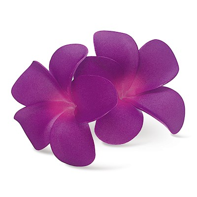 Foam Double Plumeria Clip, Purple & Pink