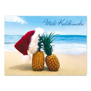 12-ct Box Xmas, Pineapples in Paradise (Teri Lathrop)